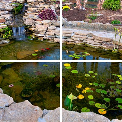 pond, residential landscaping services