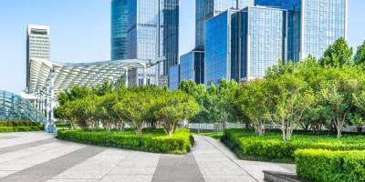 Why You Need Professional Landscaping for Your Business