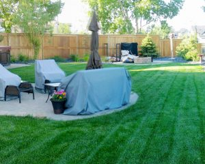 Residential Sod Services
