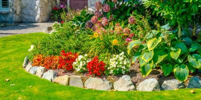 Landscape maintenance tips for fall